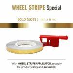 Wheel Stripe Special 5 mm con Applicatore Gold Gloss