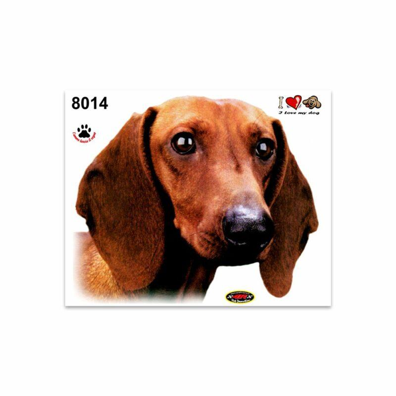 Adesivi Stickers Medi Cane Bassotto 13,5 x 16 cm