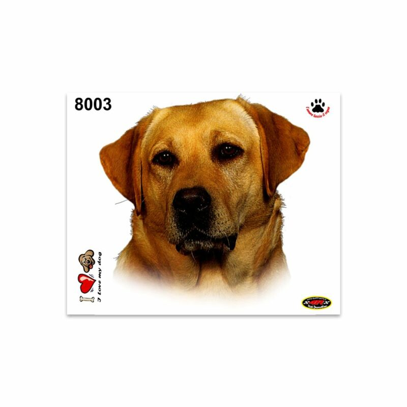 Adesivi Stickers Medi Cane Labrador 13,5 x 16 cm