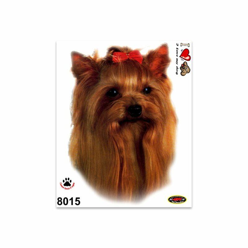 Adesivi Stickers Medi Cane Yorkshire Terrier 13,5 x 16 cm