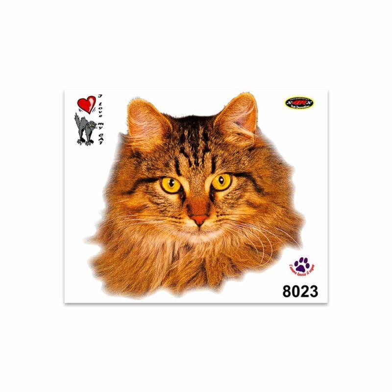 Adesivi Stickers Medi Gatto Persiano 13,5 x 16 cm